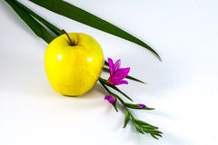 Apple and flower Royalty Free Stock Photography