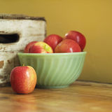 Still life of apples in bowl. Studio shot of apples in bowl royalty free stock images