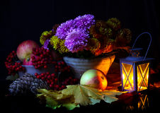 Still life with apples and chrysanthemums Stock Images