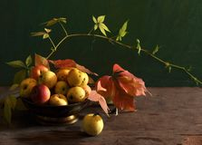 Still life with apples in a dish Royalty Free Stock Images