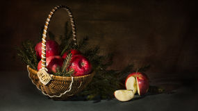 Still life of apples and fir. Still containing a picture and apples lying in the branches of spruce stock photos