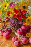 Still life with apples and flowers. Summer or autumn. Yellow flowers and red apples royalty free stock photo
