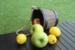 Still life of apples and lemons. Still life apples lemons rustic rough wooden grass town village nature vegeterian healthy food meal vitamins table yellow greeb royalty free stock photography