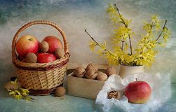 Still life with apples and nuts Royalty Free Stock Photo