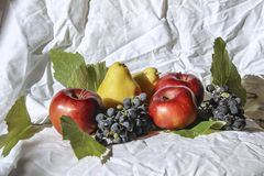 Still life with apples and pears royalty free stock photos