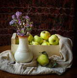 Still life with apples and snails. Lyalyatsi brown background stock image