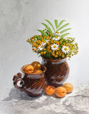 Still-life with apricots. Two brown jugs with apricots and bouquet from wild flowers Royalty Free Stock Photography