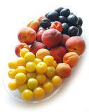 Still life. Of apricots peaches plums cherry-plums royalty free stock images