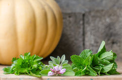 Still life of aromatic herbs. Rustic still life of aromatic herbs with a stone background Stock Photos