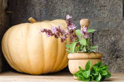 Still life of aromatic herbs. Rustic still life of aromatic herbs with a wooden mortar Stock Photos