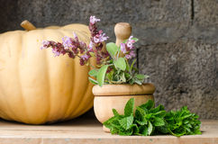 Still life of aromatic herbs. Rustic still life of aromatic herbs with a wooden mortar Royalty Free Stock Photography