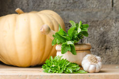 Still life of aromatic herbs. Rustic still life of aromatic herbs with a wooden mortar Royalty Free Stock Image