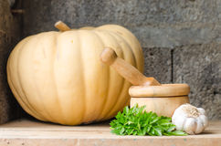 Still life of aromatic herbs. Rustic still life of aromatic herbs with a wooden mortar Stock Photography