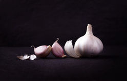 A still life arrangement of Three whole garlic bulbs grouped on Stock Images
