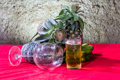 Still life art photography on banana pumpkin glass beer and pine Royalty Free Stock Photos