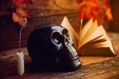 still life art photography on human skull skeleton with book omn desk stock photo