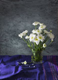 Still life art of white flower. Still life art with white flower in glass on blue tablecloth Royalty Free Stock Photos