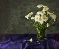 Still life art of white flower. Still life art with white flower in glass on blue tablecloth Royalty Free Stock Images
