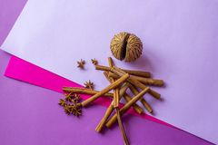 Still life of artificial coconut, cinnamon sticks and anise stars lying on coloured background.  royalty free stock images