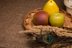 Still life with artificial fruit. On the table Royalty Free Stock Image