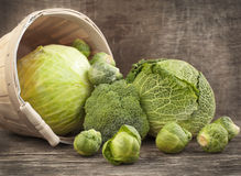 Still life with assortment cabbages Royalty Free Stock Photo