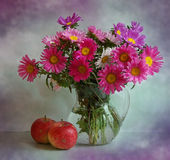 Still life with asters and apples. A bouquet of asters is in a glass vase, alongside two apples Royalty Free Stock Photography