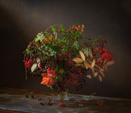 Still Life Autumn Bouquet. Autumn Bouquet and all the colors of autumn in it royalty free stock image