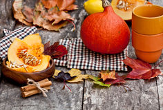 Still  life in autumn color style Stock Images
