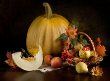 Still life with autumn flowers Stock Images
