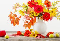 Still life with a autumn flowers Royalty Free Stock Photo