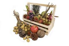 Still life with autumn fruits Royalty Free Stock Photos