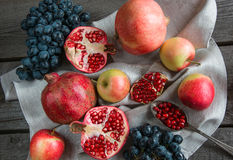 Still life of autumn fruits, pomegranates, apples. Vintage. Royalty Free Stock Image