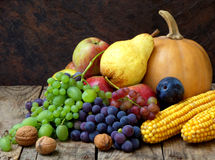 Still life of autumn fruits and vegetables like grapes, apples, pears, plums, pumpkin, corn nuts. On a wooden background Royalty Free Stock Photo