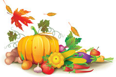 Still life of autumn harvest Royalty Free Stock Images