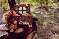 Still life of autumn picnic Royalty Free Stock Images