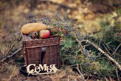 Still life of autumn picnic Stock Photos