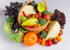 Still life of autumn vegetables Royalty Free Stock Image