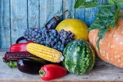 Still life of autumn vegetables: melon and watermelon, corn, eggplant, peppers, tomatoes Stock Photo