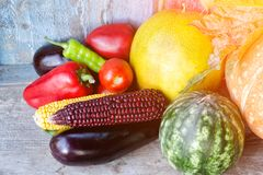 Still life of autumn vegetables: melon and watermelon, corn, eggplant, peppers, tomatoes Royalty Free Stock Photos