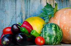 Still life of autumn vegetables: melon, watermelon, eggplant, peppers, tomatoes. Royalty Free Stock Photography