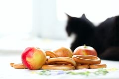 Still Life with a bagels, apples and sedentary cat Stock Image