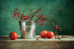 Still-life with barberry and tomato. Vintage still-life with barberry and tomato Stock Photo