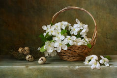 Still life with a basket of flowers apple. Vintage still life with a basket of flowers apple Royalty Free Stock Photo