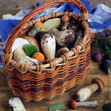 Still life with a basket of mushrooms. stock photo