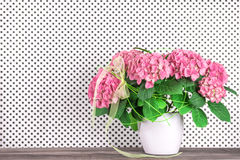 Still life with beautiful hortensia flowers bouquet Stock Image