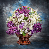 Still life, a beautiful lilac and lily of the valley in the bask Stock Photo