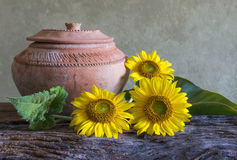 Still life beautiful sunflowers Royalty Free Stock Photography
