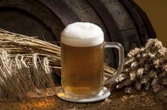 Still-life with beer. A still-life with beer and barley Royalty Free Stock Photography