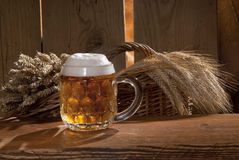 Still-life with beer. A still-life with beer and barley Stock Images