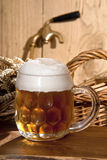 Still-life with beer. A still-life with beer and barley Royalty Free Stock Images